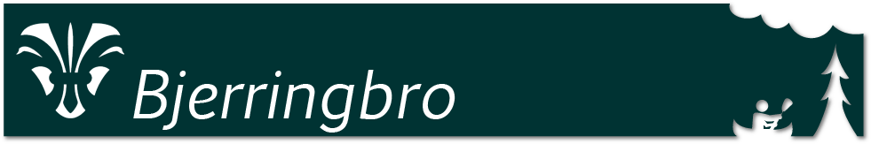KFUM Bjerringbro